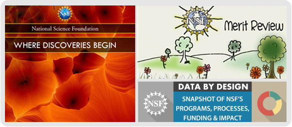 NSF graphic banner